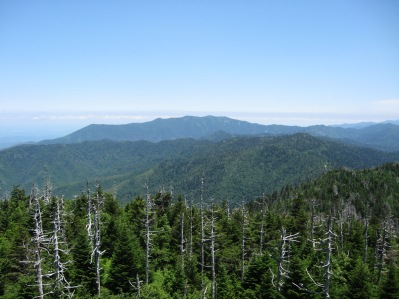 Mt Leconte from Clingmans Dome