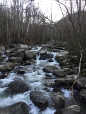 Middle Prong of the Little Tennessee at Ramsay Cascades Trail