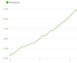 Ramsay Cascades Elevation