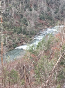 View of Abrams Creek from Hatcher Mountain Trail