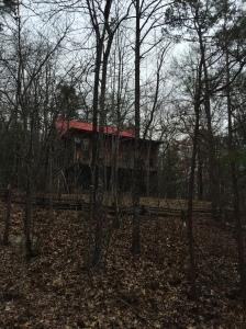 Cabin near access to Gold Mine Trail