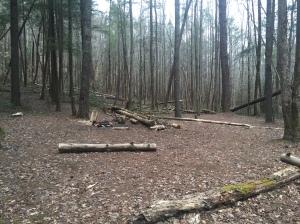 Campsite #2 - Cane Creek