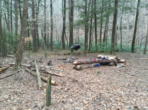 Campsite #3 = Hesse Creek