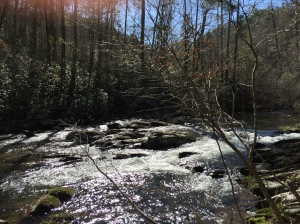 Abrams Creek at Hannah Mountain Trail