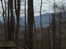 View of Cades Cove from Anthony Creek
